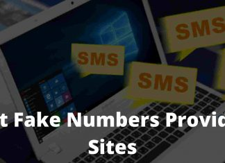 5 Best Fake Numbers Providers Sites For Online Verification