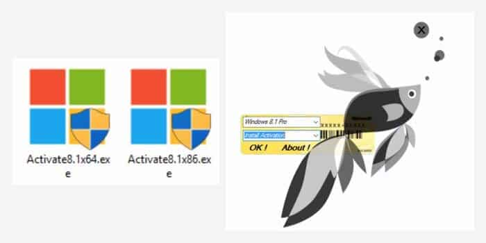 Activation of Windows 8 Using Activator