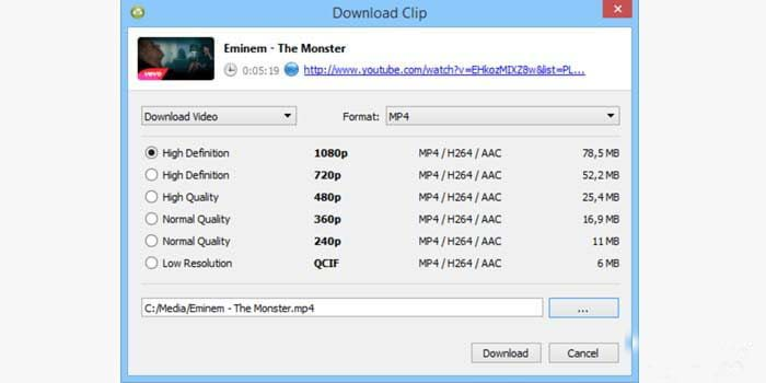 YouTube Video Subtitle Download application