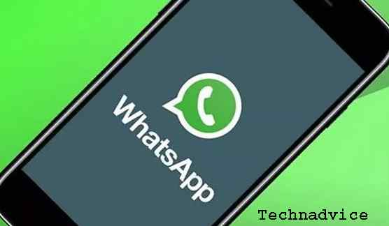 Contact the WhatsApp Support Service