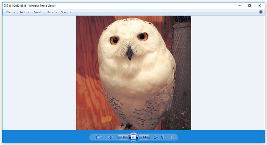 now your photos can be displayed using Windows Photo Viewer